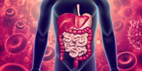 L'inflammation des intestins peut parfois cacher des maladies chroniques comme la RCH ou la maladie de Crohn.